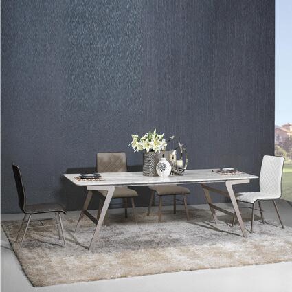 DTB-T15767天然石餐桌(220*100)+CHR-DC13284餐椅*6